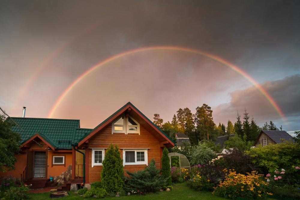 Фото: Olga_Kuzmina/shutterstock