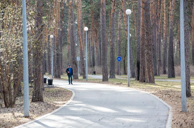 В парке возведут также защитную дамбу