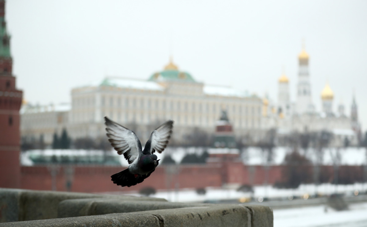 Фото: Михаил Терещенко  /ТАСС
