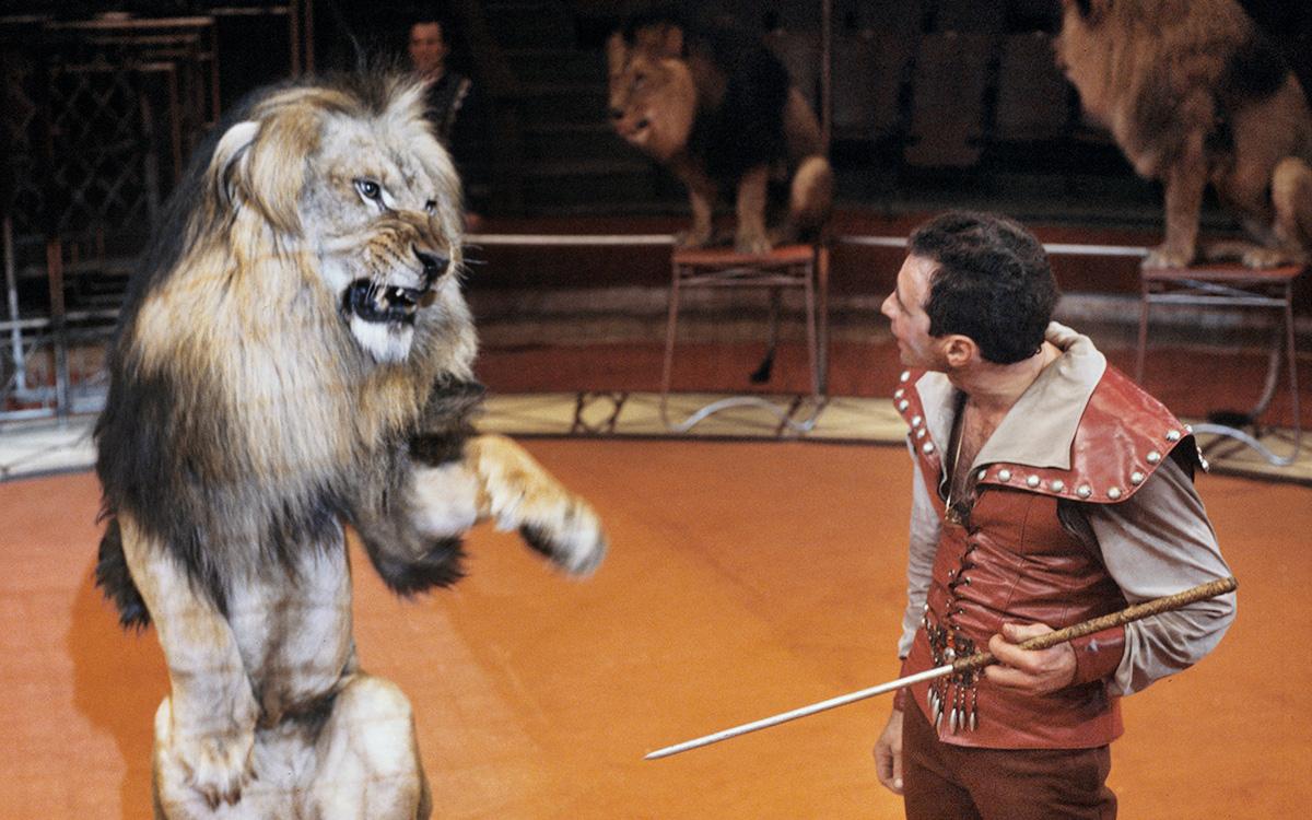 Борис Бирюков с дрессированными львами