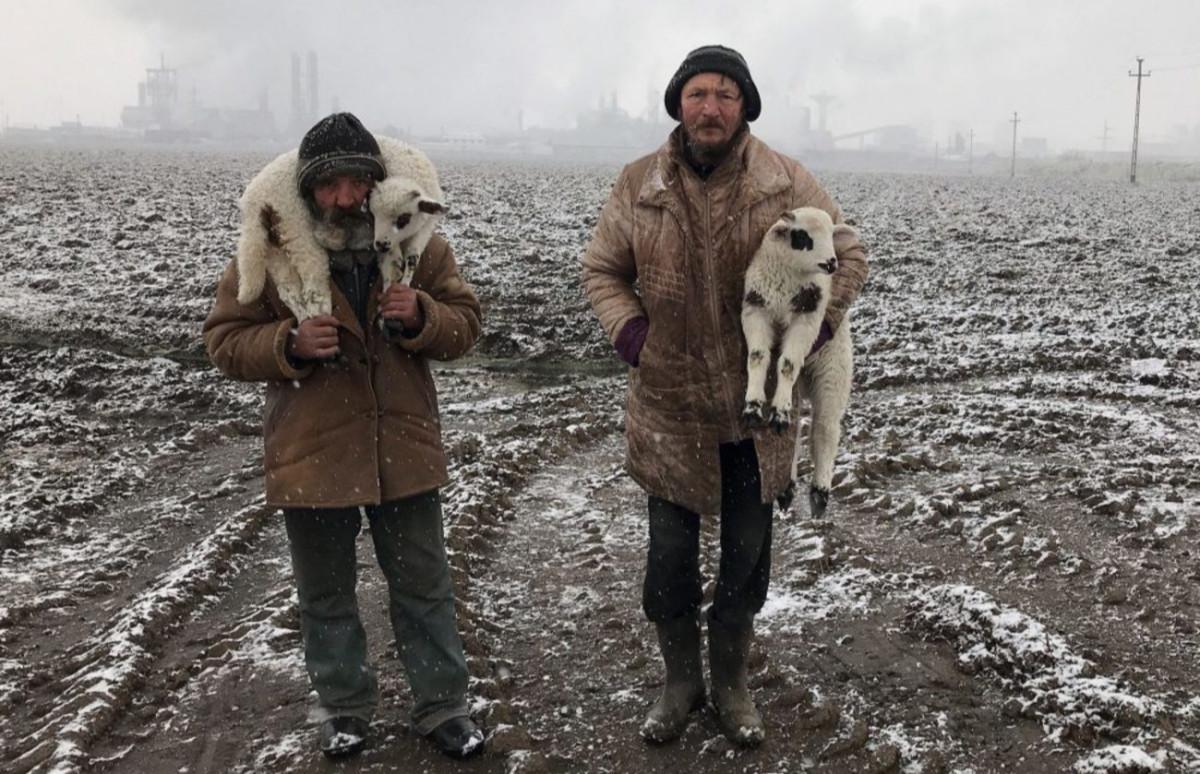 Иштван Керекеш, «Трансильванские пастухи»
