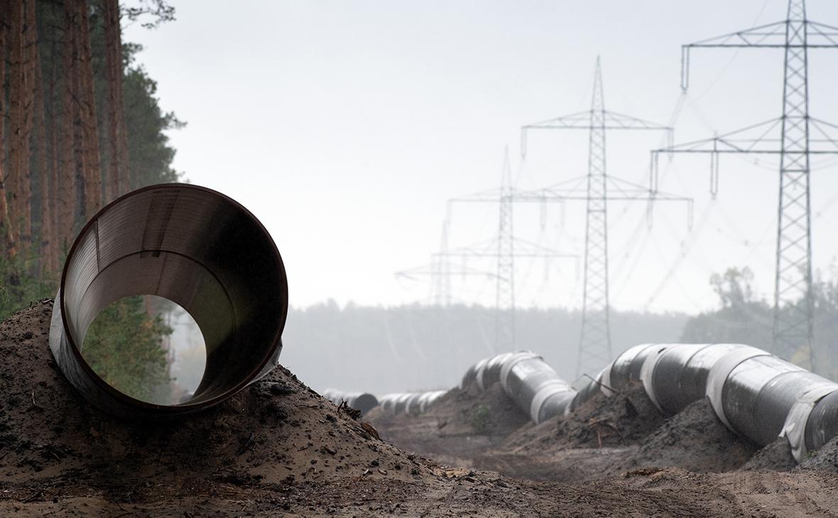 Фото: Soeren Stache / DPA / picture-alliance / ТАСС