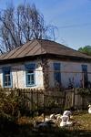 Фото: Объем вводимого на Кубани жилья снизился на 6%