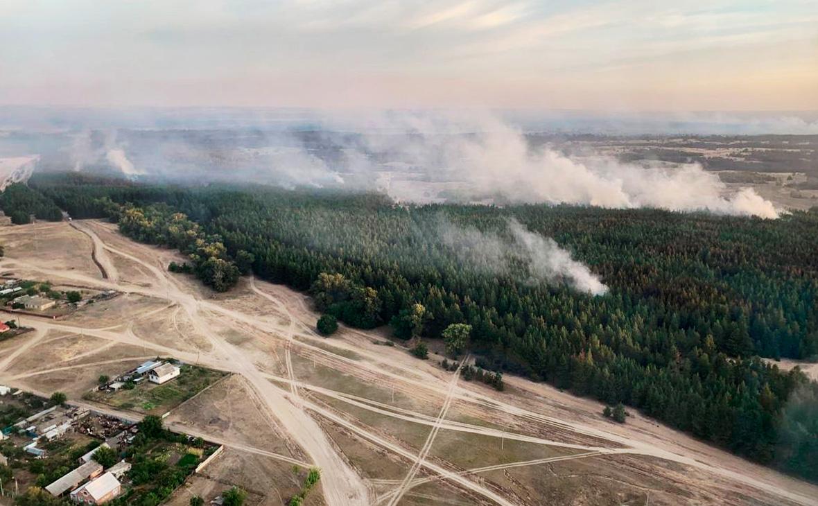Фото: Правительство Ростовской области