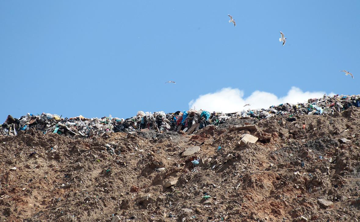 Полигон твердых бытовых отходов «Кучино»