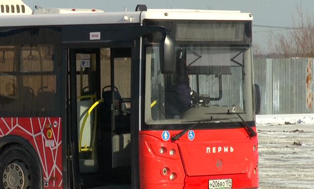 Двухнедельные услуги перевозчика из Кондратово оценили в 1,8 млн руб.