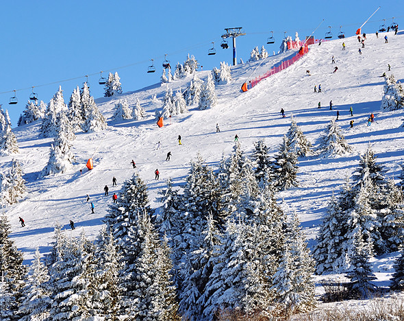 Фото: depositphotos.com; пресс-материалы
