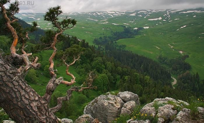 Фото: vadygee.ru