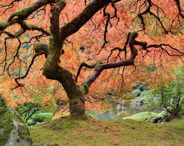 Фото: 123rf.com