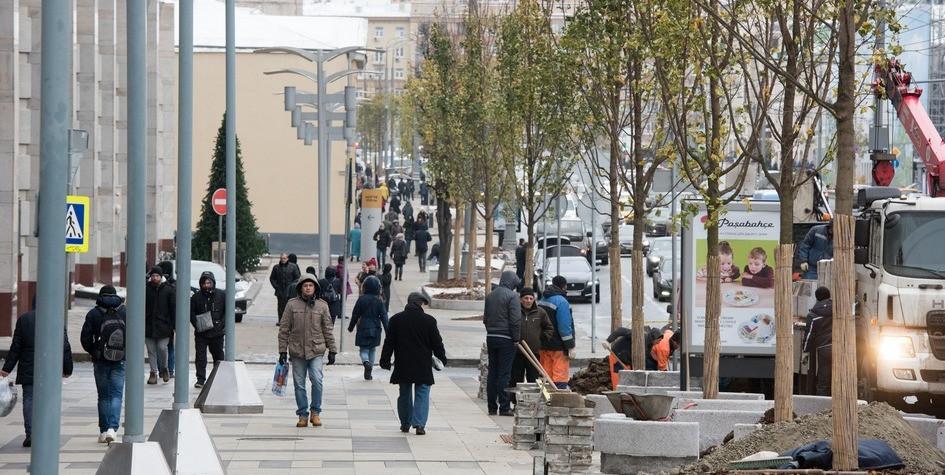 Высадка кленов наСадовом кольце врайоне Нового Арбата врамках программы «Моя улица»