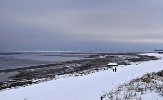 Побережье Белого моря вАрхангельской области, 2008 год
