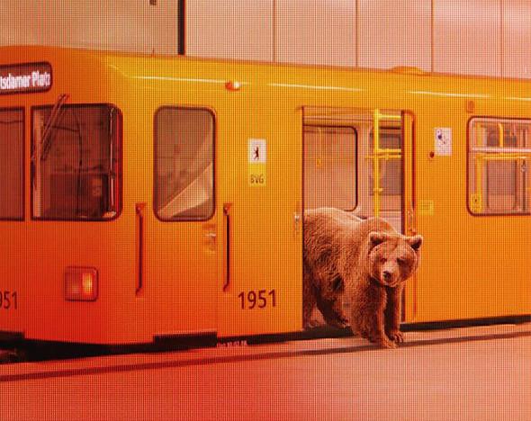 Фото: facebook.com/berlinale