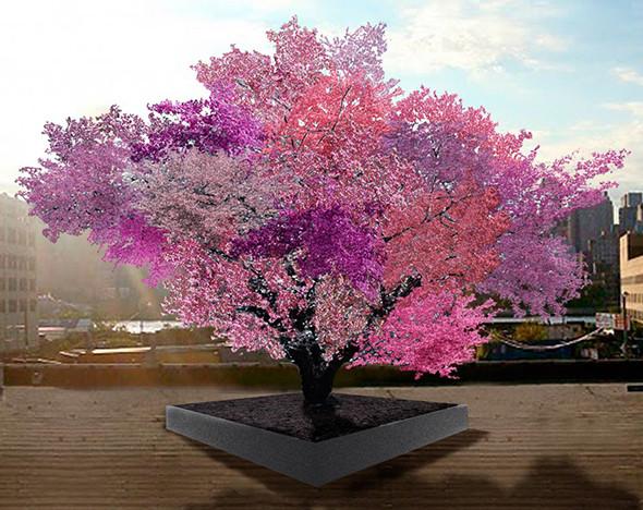 Фото:  treeof40fruit.com