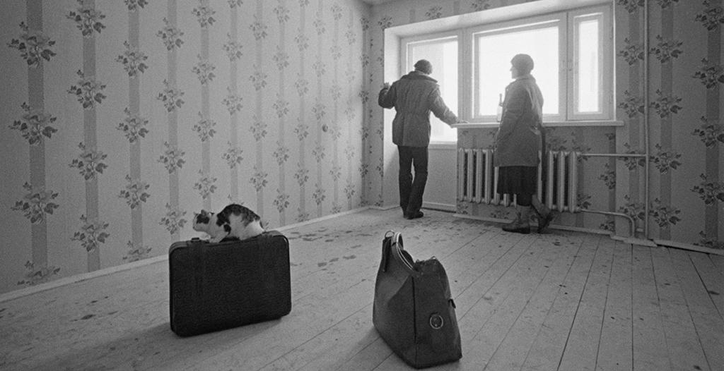 Фото:Рухадзе Анатолий/Фотохроника ТАСС