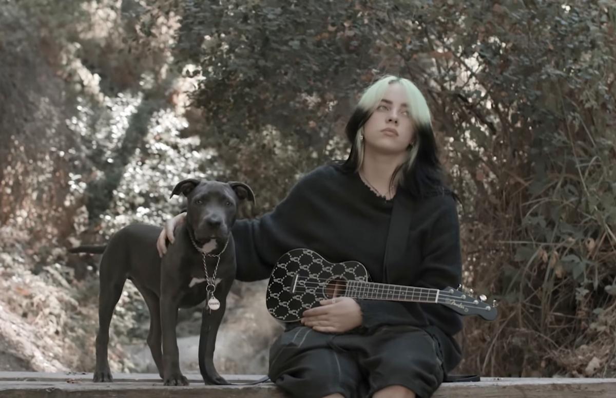 Фото: Fender / YouTube