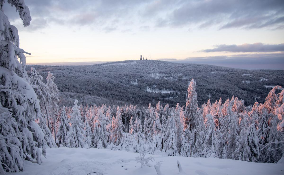 Фото: Jan Eifert / ТАСС