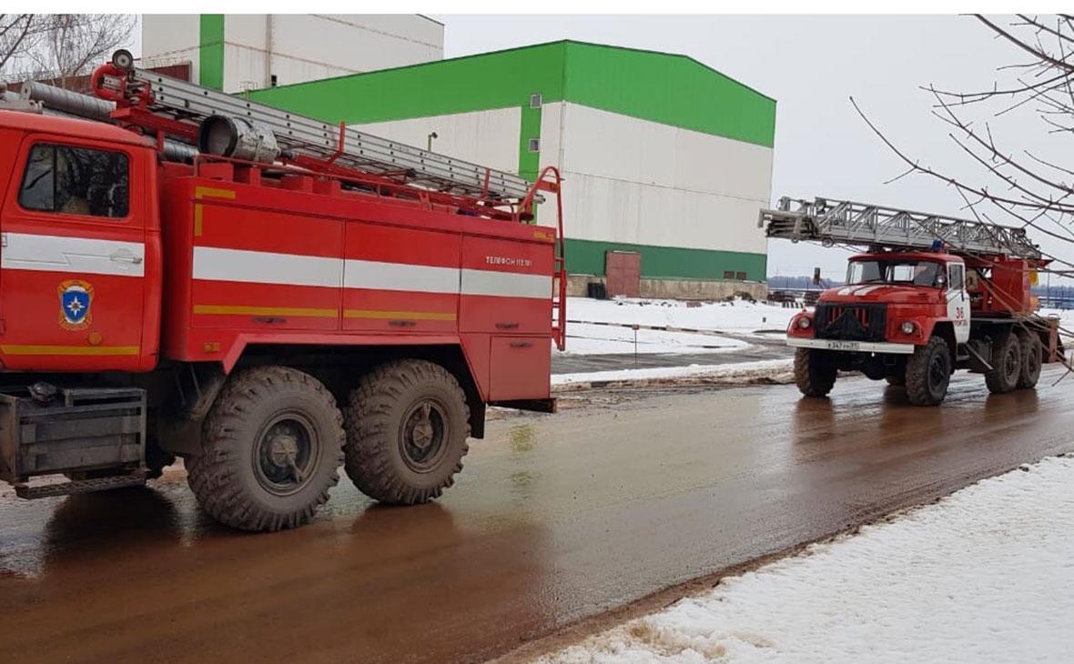 Фото: 31.mchs.gov.ru