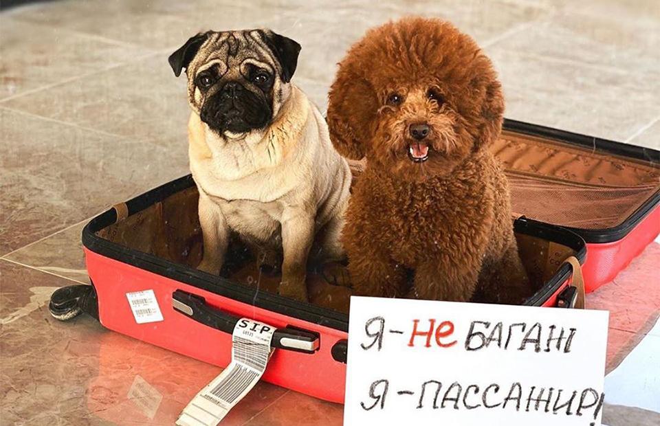 Фото: instagram.com/gleb_kornilov/