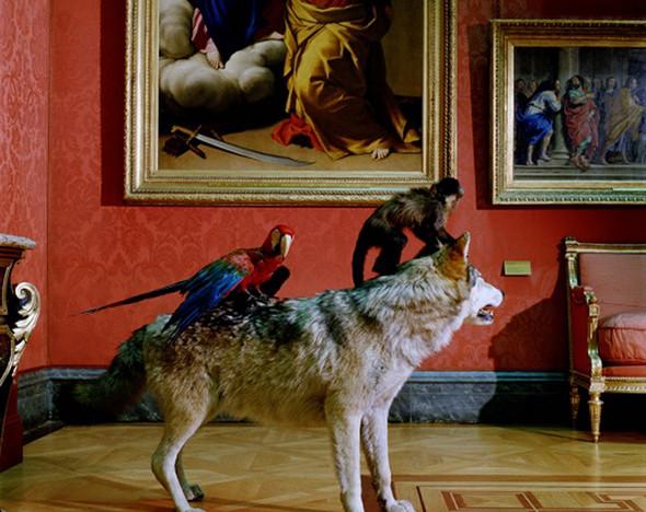 Фото: mamm-mdf.ru; moscowmanege.ru; darwinmuseum.ru; arts-museum.ru