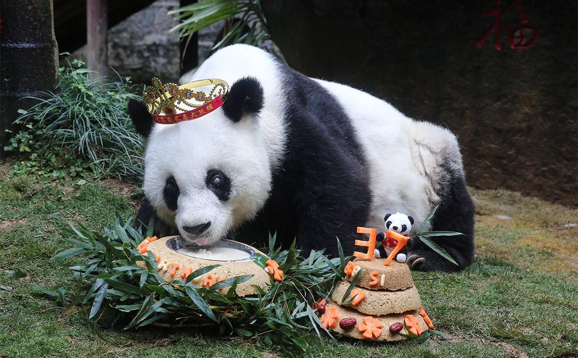 Фото: China Daily CDIC / Reuters