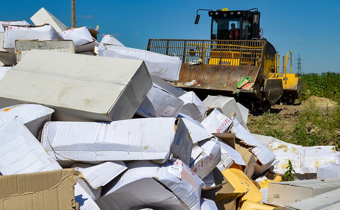 Уничтожение санкционных продуктов. Август 2015 года
