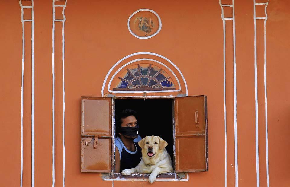 Фото: Vishal Bhatnagar/NurPhoto via Getty Images