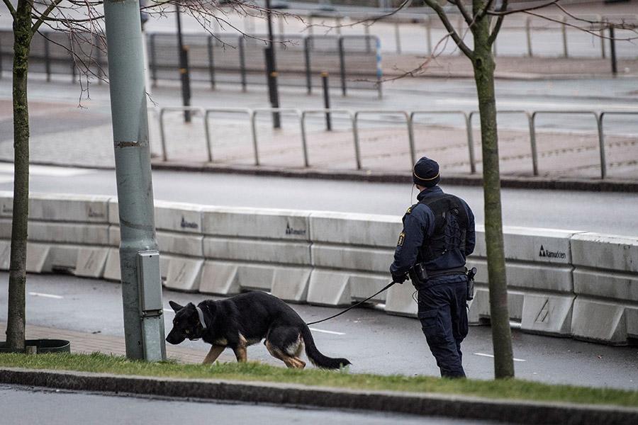Фото: Bjorn Larsson Rosvall / Reuters