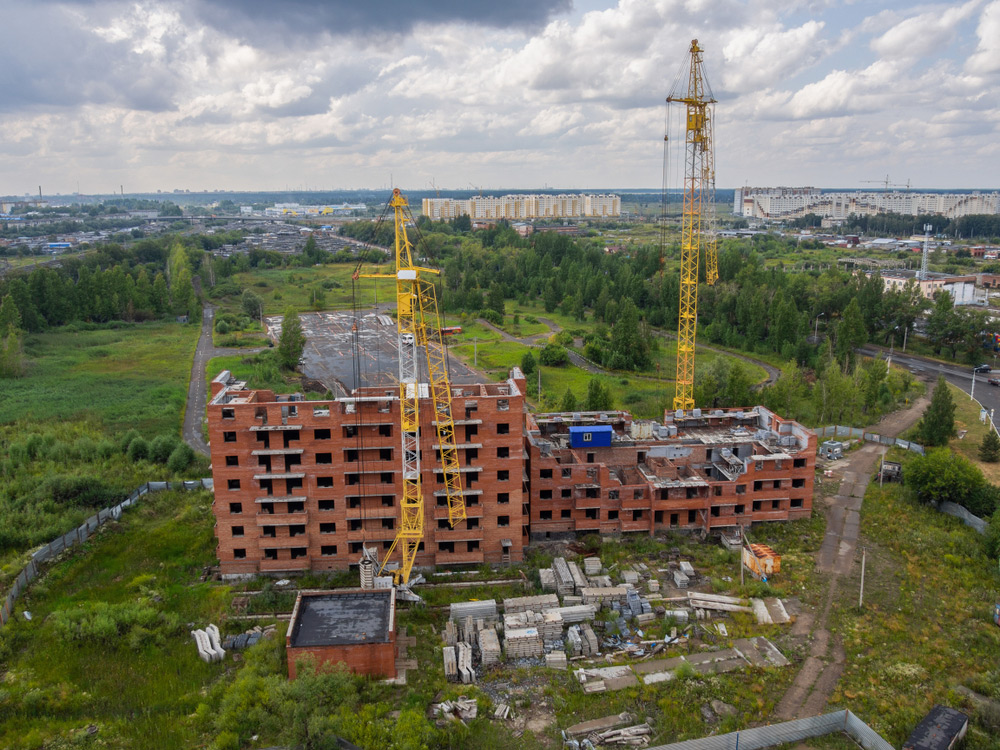 Фото: Mashkova Polin/shutterstock