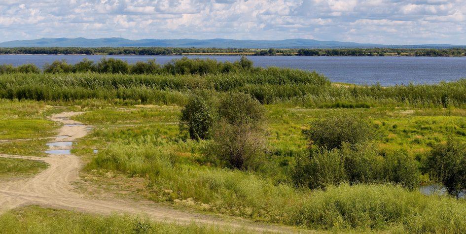 Побережье реки Амур на Дальнем Востоке России