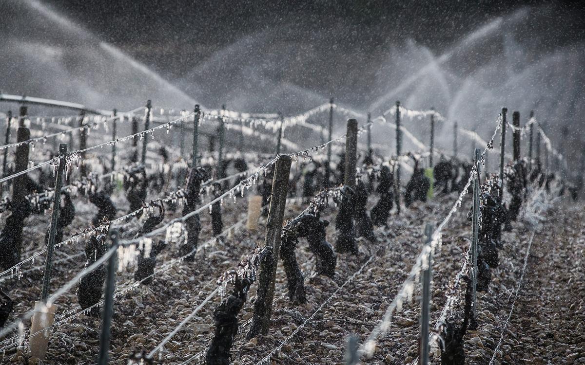 Фото: Christophe Petit Tesson / EPA / ТАСС