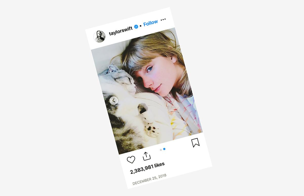 Фото: taylorswift/instagram