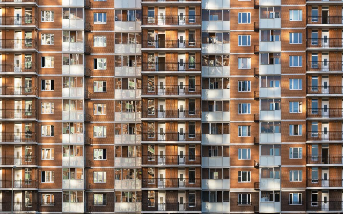 Фото: MSharova/shutterstock