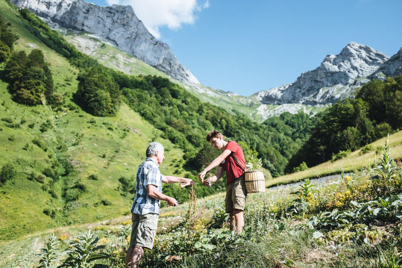 Собственный участок Clarins в Альпах