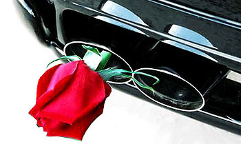 Самые экологичные автокомпании мира