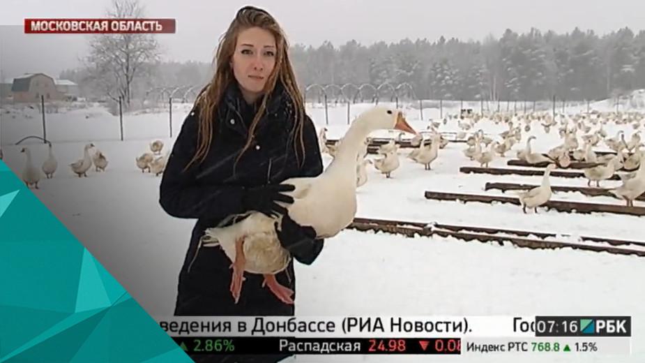 Виды репортажей: новости и не только