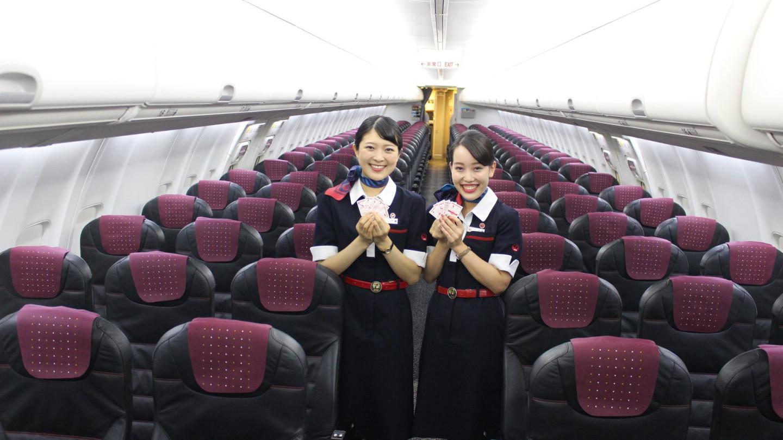 Japan Airlines, экономкласс