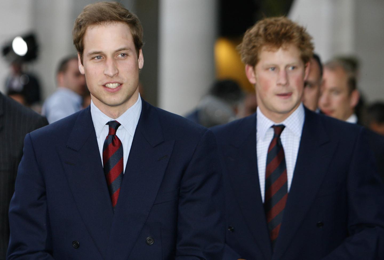 Принц Уильям и Принц Гарри, 2008