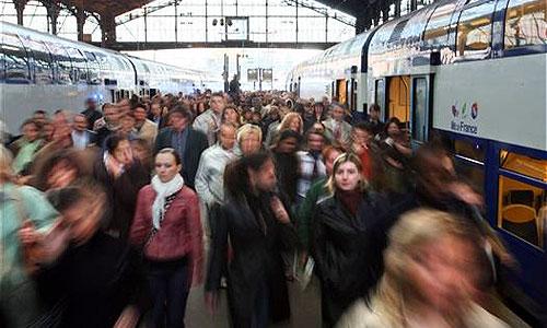 Власти Москвы назвали адреса 34 транспортно-пересадочных узлов
