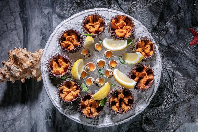 Морские ежи вHumans seafood bar