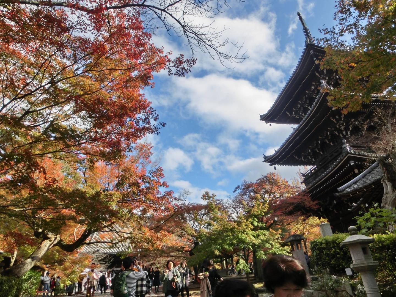 Фото: facebook.com/pages/Shinshōgokuraku-ji
