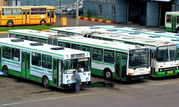 Автобусы на Камчатке не вышли на линии из-за отсутствия российских прав у водителей
