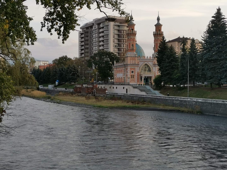 Вид на Терек, мечеть Мухтарова и горы во Владикавказе