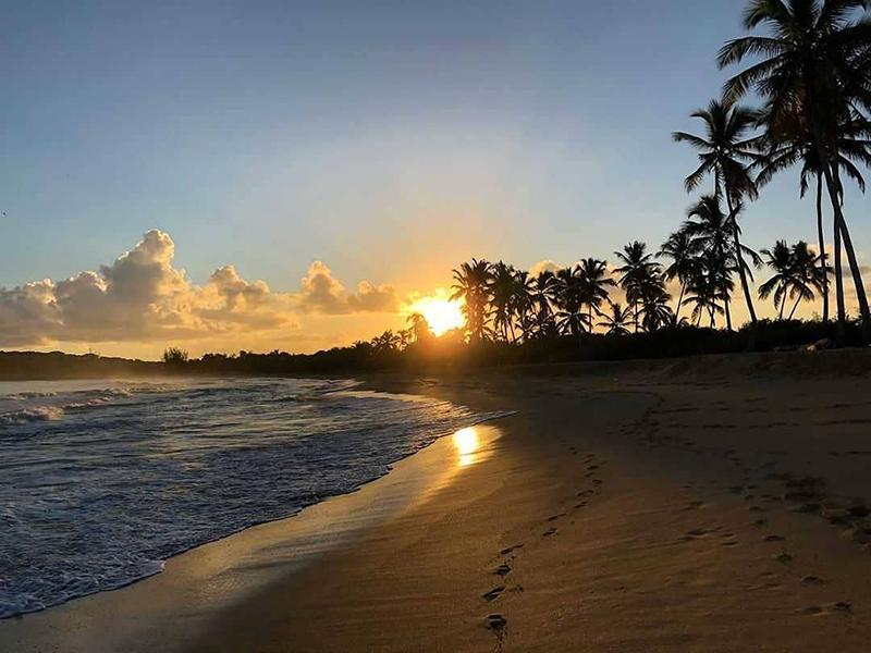 Плайя Макао, Баваро, Доминикана
