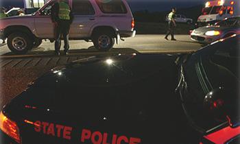 В США женщина попала под машину, убегая от медведя