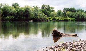 На Камчатке в реке утонул вездеход, погибли 4 человека