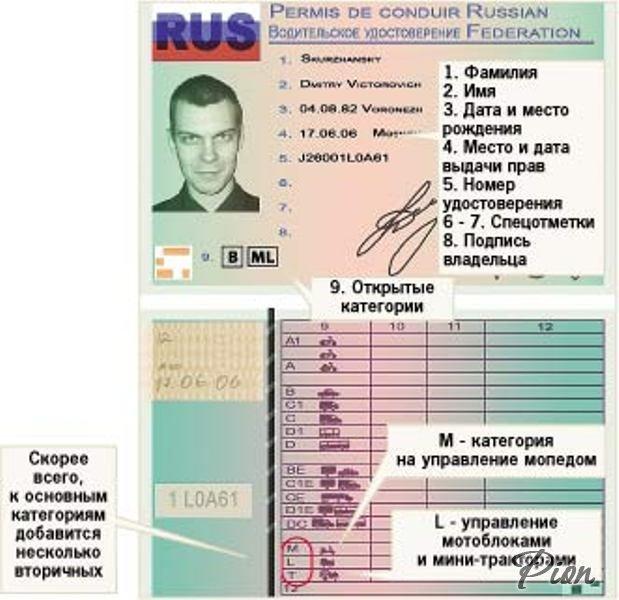 Как выглядят новые водительские удостоверения