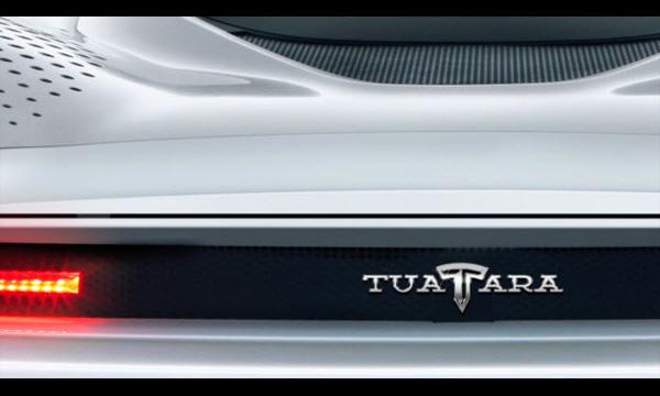 Tuatara