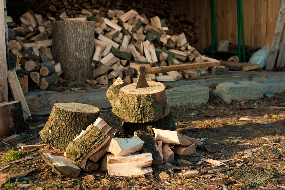 Фото: depositphoto.com/trofalena