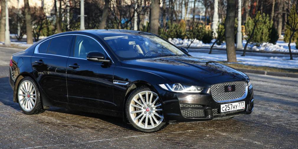 Зверобой обыкновенный. Тест-драйв Jaguar XE