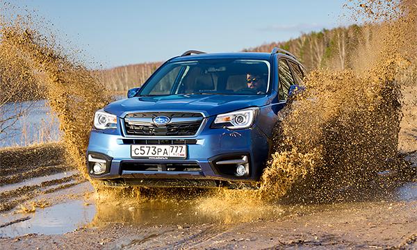 Его лесничество. Тест-драйв Subaru Forester